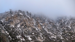 Californian-snow-L.Moser
