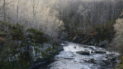 Scottish-river-L.Moser_